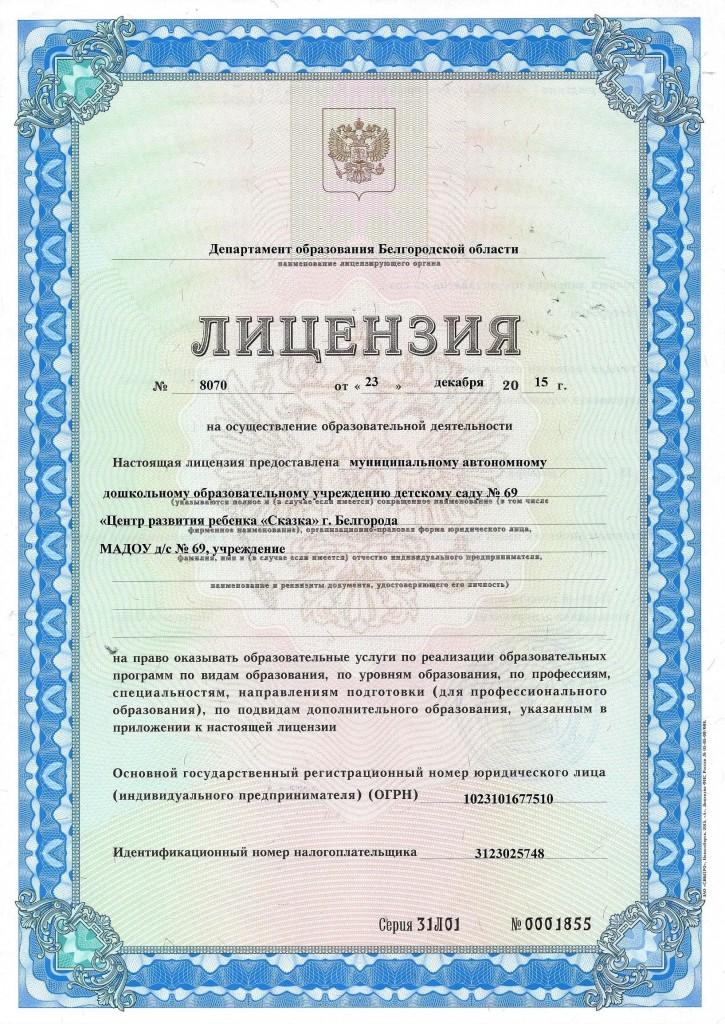 Лицензия-725x1024